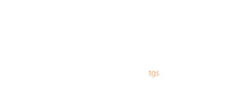 GCF Consultores